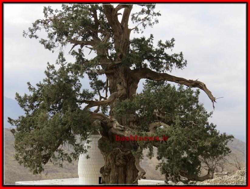 آثار باستانی باشت
